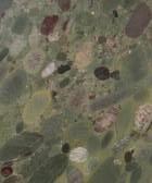 granito plytelės morgan green